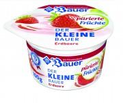 4002334112776_Bauer_DerkleineBauer-FeinpuerierteFruechte_100g_Erdbeere_CMYK-high