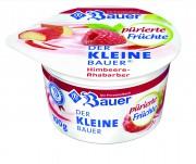 4002334112790_Bauer_DerkleineBauer-FeinpuerierteFruechte_100g_HimbeereRhabarber_CMYK-high
